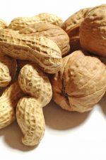 nuts-free